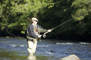 River Tweed fishing