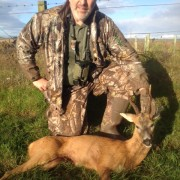 roe deer stalking scotland