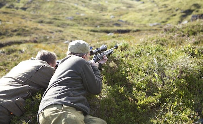 deer stalking in scotland 2015