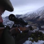 deer hunting in scotland