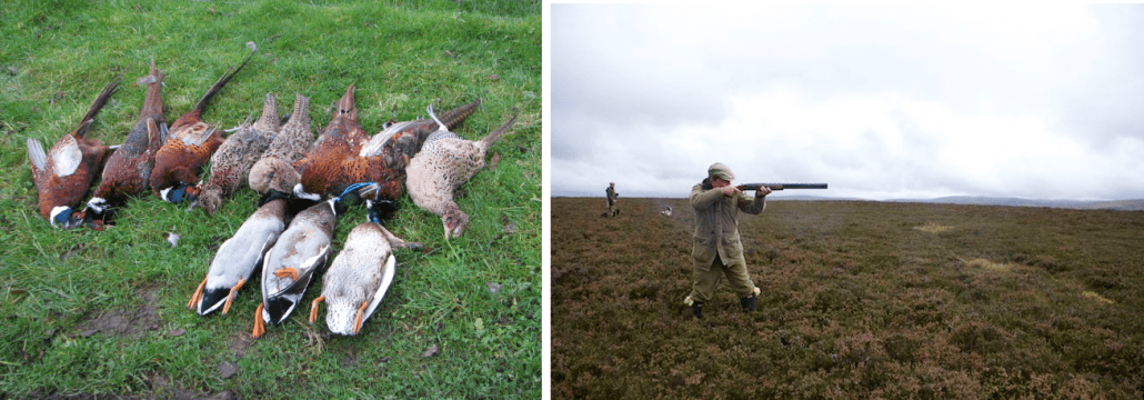 wingshooting in scotland
