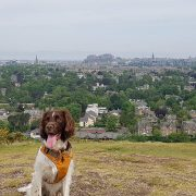 summer holiday in edinburgh hill walking