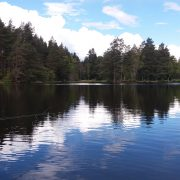Trout fishing in the scottish highlands