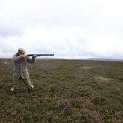 walked up grouse shooting Scottish Highlands