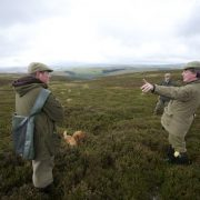 wing shooting highlands Scotland