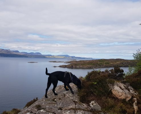 veiw from raasay to skye