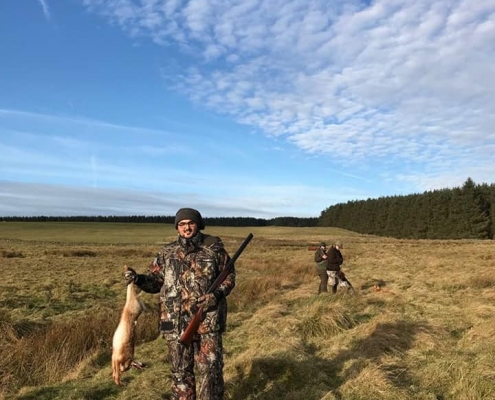 upland hunting for hare in Scotland