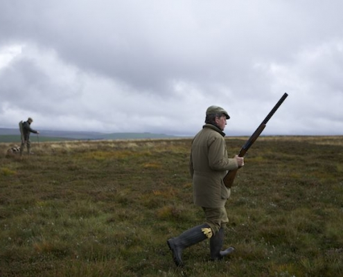 Scottish wingshooting