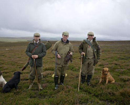 upland grouse hunting