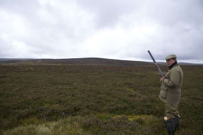 grouse hunting Scottish Vacation in the Scottish Borders