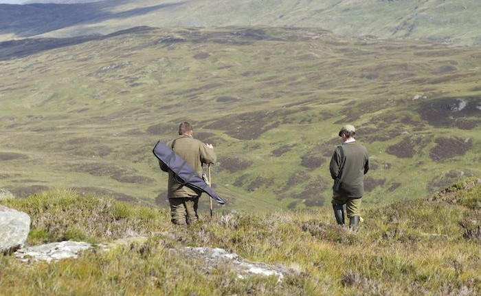 Last minute stalking holidays scotland
