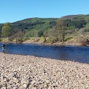 Salmon fishing on the River Tay 1