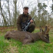 roe buck hunting summer holiday in scotland