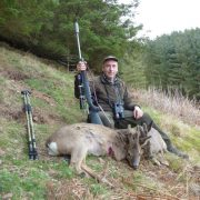 summer holiday in scotland roe buck