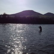 summer salmon fishing in Scotland