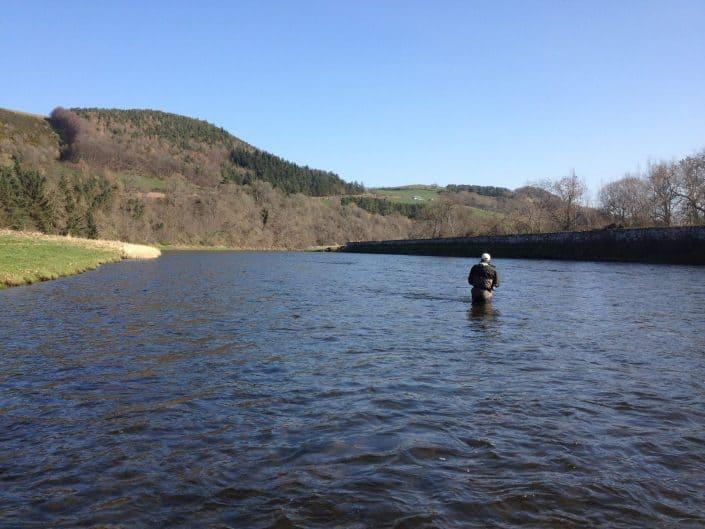 wading Scottish salmon fishing