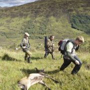 deer season Scotland
