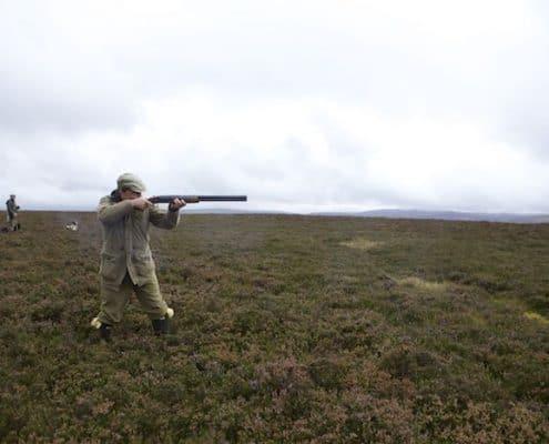 wing bird hunting tour