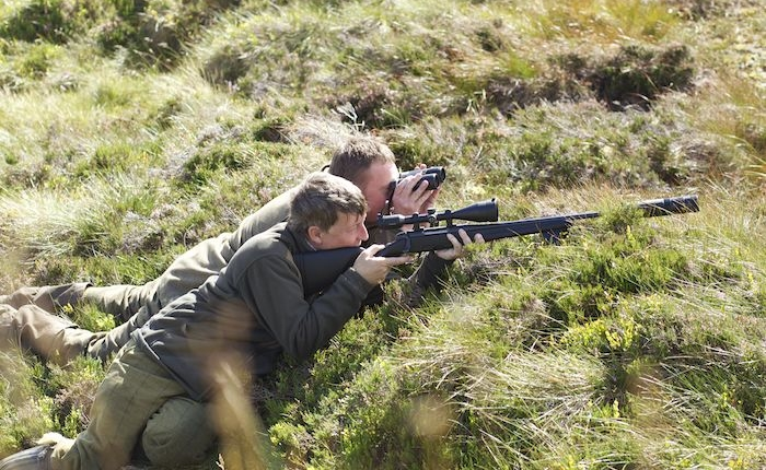 deer hunting tour of Scotland