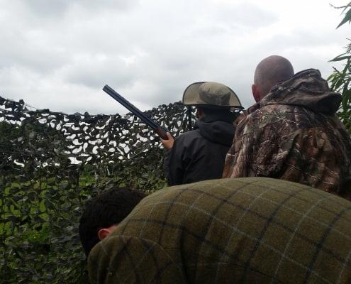 hunting seasons Scotland wood pigeon
