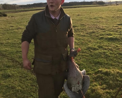 image of goose wing shooting Scotland