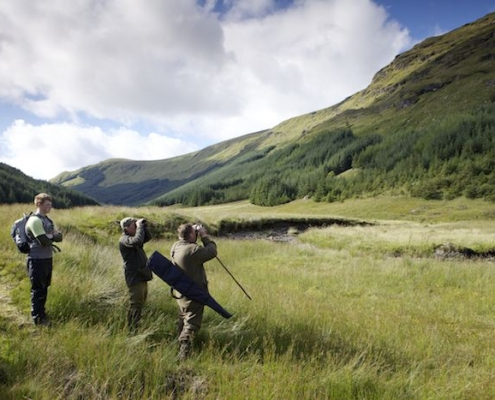 Scottish New Year Highland hunting