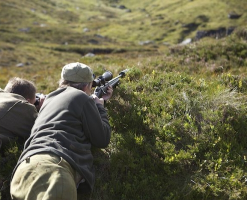 deer hunting New Year in Scotland