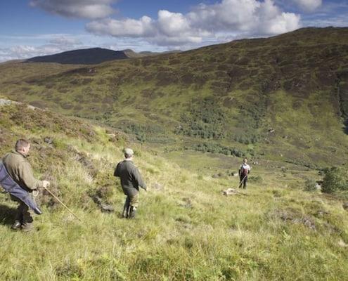 Scottish New Year deer hunting vacation