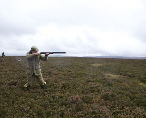 Scottish New Year wingshooting