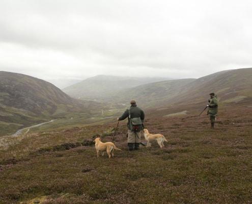 scotland hunting