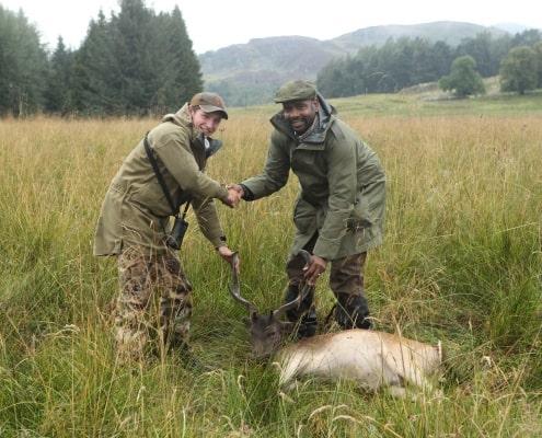 fallow buck hunting tour of Scotland