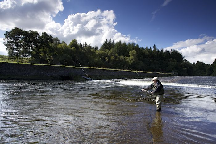 scottish vacation salmon fishing