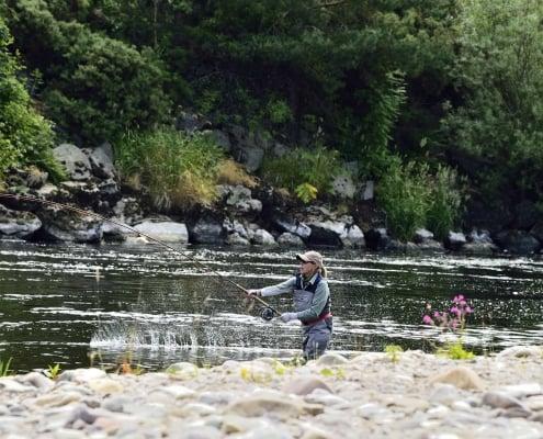 September salmon